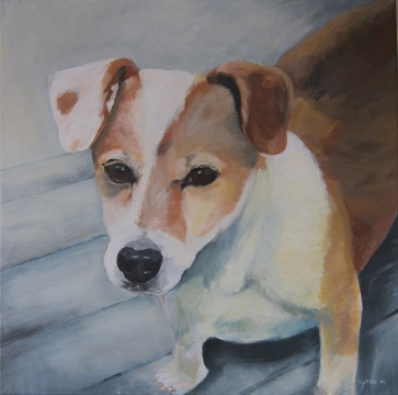 'Hond van Patricia' In opdracht 40x40 Acryl op doek 2014